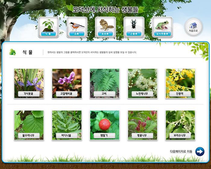 2-식물1-1024x819
